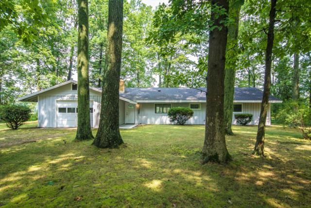 8426 Mcarthur Avenue NE, Greenville, MI 48838 (MLS #18043087) :: Carlson Realtors & Development