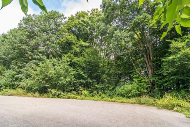 12999 Links Lane Lane, Gowen, MI 49326 (MLS #18043138) :: JH Realty Partners