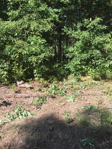 Evergreen Lane, Fennville, MI 49408 (MLS #18043254) :: Carlson Realtors & Development