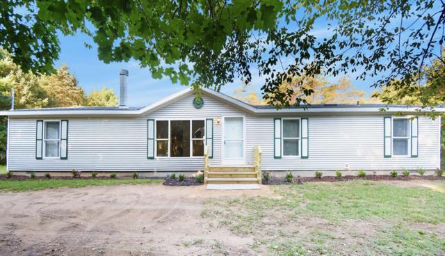 420 52nd Street, Grand Junction, MI 49056 (MLS #18043314) :: JH Realty Partners