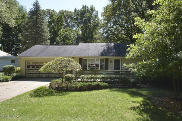 52471 Silver Saddle Drive, Grand Junction, MI 49056 (MLS #18043410) :: JH Realty Partners