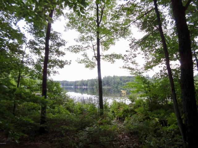 V/L Riverview Drive, Greenville, MI 48838 (MLS #18043633) :: Deb Stevenson Group - Greenridge Realty
