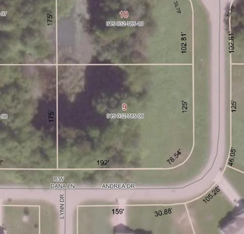 137 Andrea Drive, Sand Lake, MI 49343 (MLS #18043686) :: Carlson Realtors & Development
