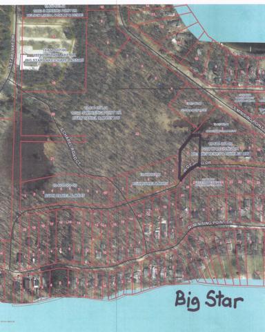 Dejong, Baldwin, MI 49304 (MLS #18043729) :: Carlson Realtors & Development
