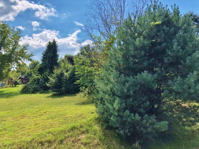 5922 102nd Avenue, Grand Junction, MI 49056 (MLS #18043733) :: JH Realty Partners