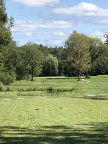 2480 Duck Lake Road, Whitehall, MI 49461 (MLS #18043744) :: Carlson Realtors & Development