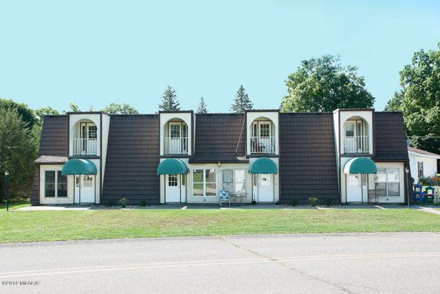 120 Park Street, Lakeview, MI 48850 (MLS #18043767) :: Deb Stevenson Group - Greenridge Realty
