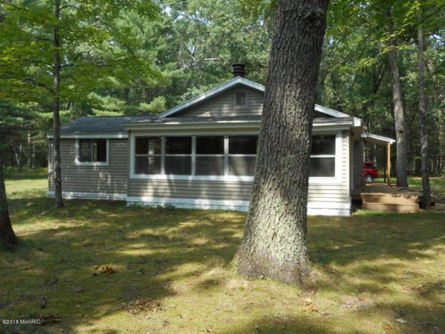 6582 Pine Crest Drive, Baldwin, MI 49304 (MLS #18043876) :: Matt Mulder Home Selling Team