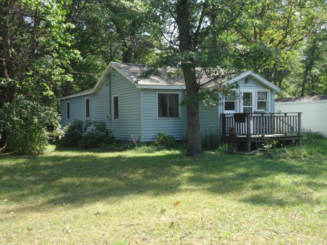 11728 S. M-37, Bitely, MI 49309 (MLS #18043967) :: Carlson Realtors & Development