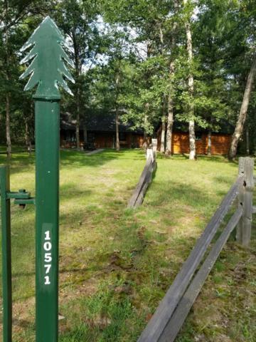 10571 Brookside, Irons, MI 49644 (MLS #18044165) :: Carlson Realtors & Development