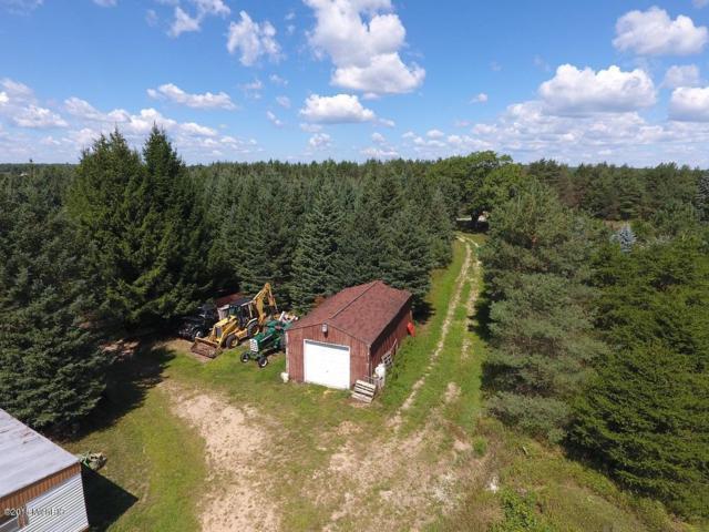 8950 E Burns Road, Merritt, MI 49667 (MLS #18044745) :: Deb Stevenson Group - Greenridge Realty