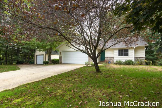 11199 W Harlow Road, Greenville, MI 48838 (MLS #18044880) :: JH Realty Partners