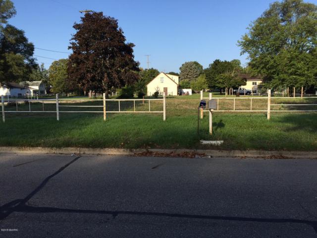 132 S Bronson Avenue, Big Rapids, MI 49307 (MLS #18045011) :: Carlson Realtors & Development
