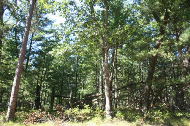 Lot 32&33 Mohawk Street, Pentwater, MI 49449 (MLS #18045028) :: Deb Stevenson Group - Greenridge Realty