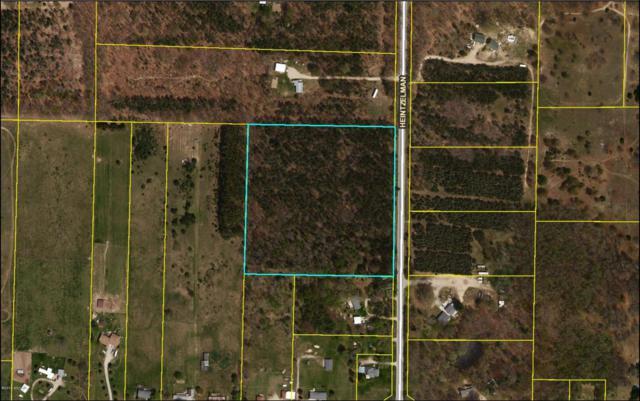 11765 Heintzelman Avenue NE, Greenville, MI 48838 (MLS #18045157) :: Carlson Realtors & Development