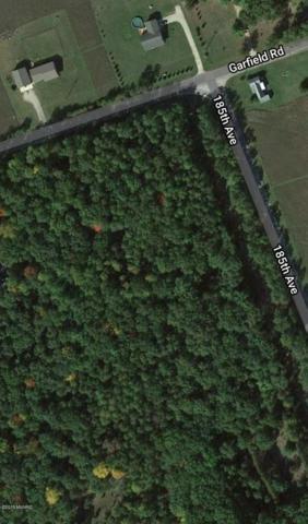 185th Avenue, Big Rapids, MI 49307 (MLS #18045182) :: Carlson Realtors & Development