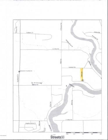 185th Avenue, Big Rapids, MI 49307 (MLS #18045283) :: Carlson Realtors & Development