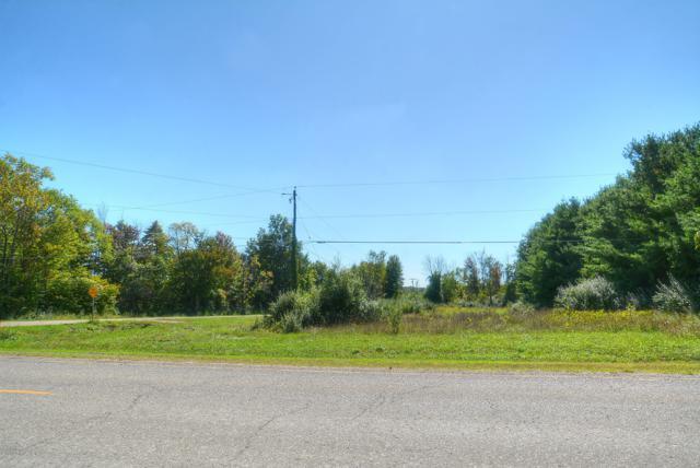 TBD 64th Ave., Allendale, MI 49401 (MLS #18045372) :: Carlson Realtors & Development