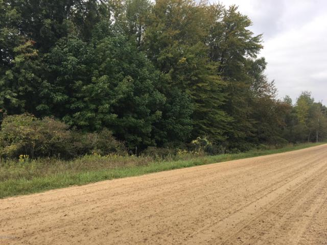 1998 N Marble Road, Trufant, MI 49347 (MLS #18045434) :: JH Realty Partners