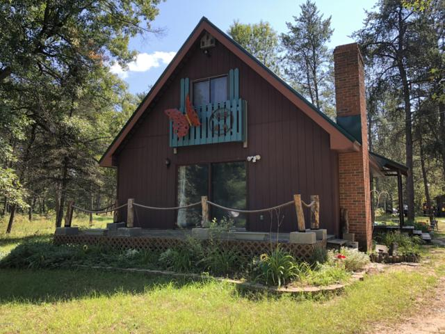 880 3 Mile Road, Luther, MI 49656 (MLS #18045769) :: Deb Stevenson Group - Greenridge Realty