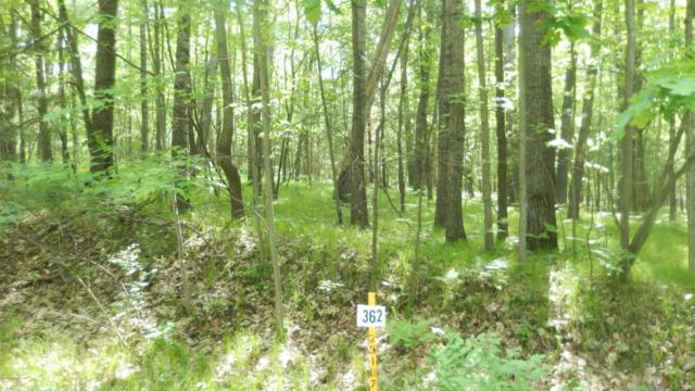 8278 Highland Trail #362, Canadian Lakes, MI 49346 (MLS #18046061) :: JH Realty Partners