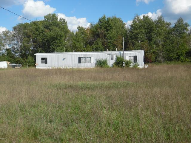 9220 50th Avenue, Evart, MI 49631 (MLS #18046123) :: Carlson Realtors & Development