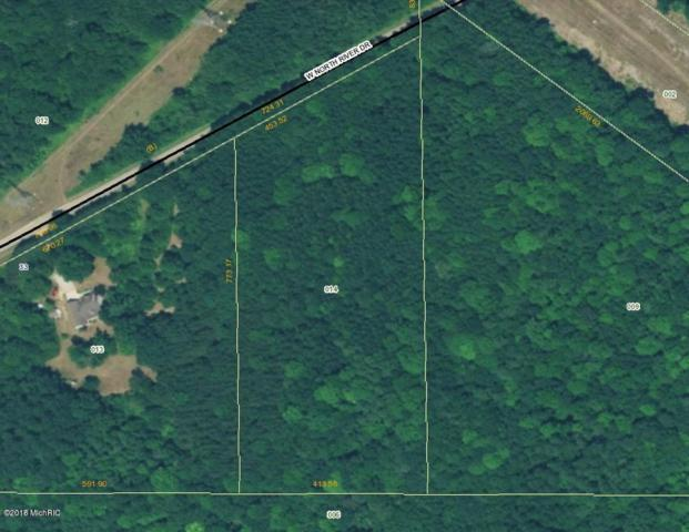 Par D North River Drive, Newaygo, MI 49337 (MLS #18046178) :: JH Realty Partners