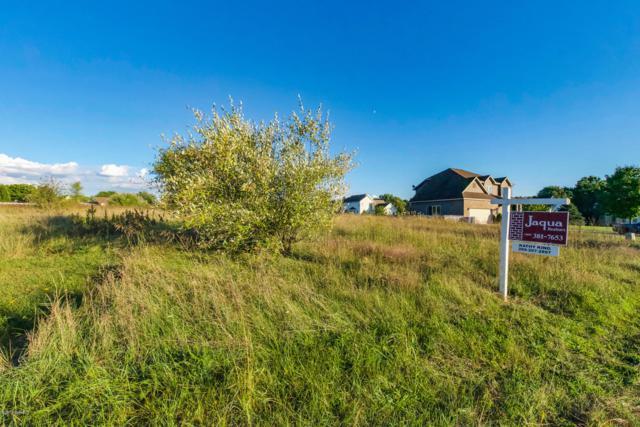 5910 Nancy Ann Drive, Kalamazoo, MI 49004 (MLS #18046204) :: Carlson Realtors & Development