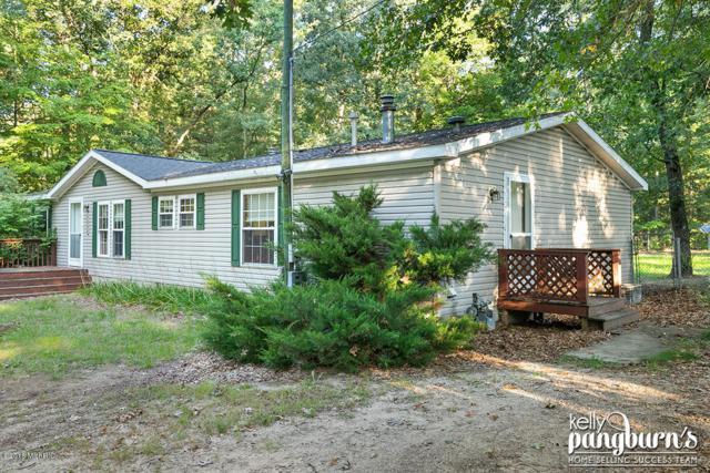 1689 E Pine Street, Newaygo, MI 49337 (MLS #18046255) :: Carlson Realtors & Development