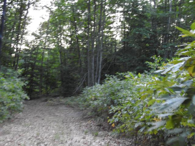 117 Acres 64th Avenue, Mears, MI 49436 (MLS #18046347) :: JH Realty Partners