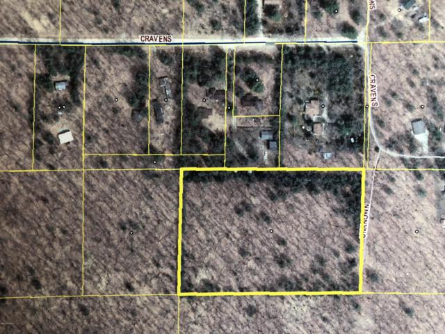 Cravens, Wellston, MI 49689 (MLS #18046364) :: Deb Stevenson Group - Greenridge Realty