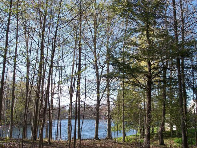 Lot 116 E Negaunee Lake Dr. Drive, Evart, MI 49631 (MLS #18046578) :: JH Realty Partners