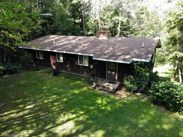 9614 23 Mile Road, Evart, MI 49631 (MLS #18046819) :: Matt Mulder Home Selling Team