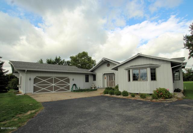 203 Baden Place, Fremont, MI 49412 (MLS #18047094) :: JH Realty Partners