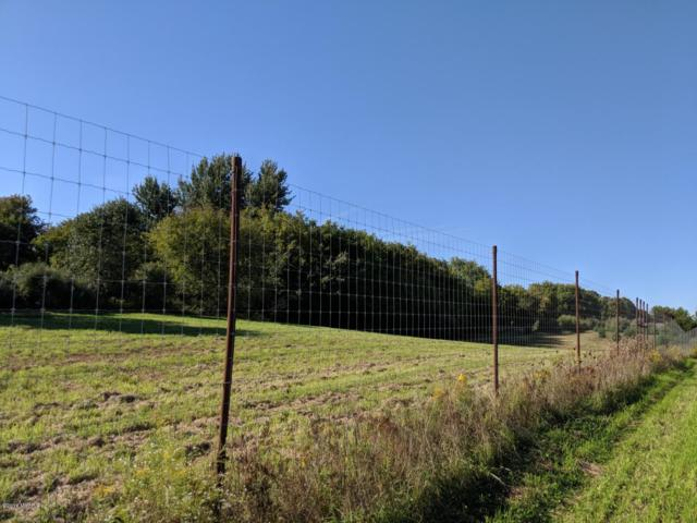 2014-22 Acres Us 10, Custer, MI 49405 (MLS #18047257) :: JH Realty Partners