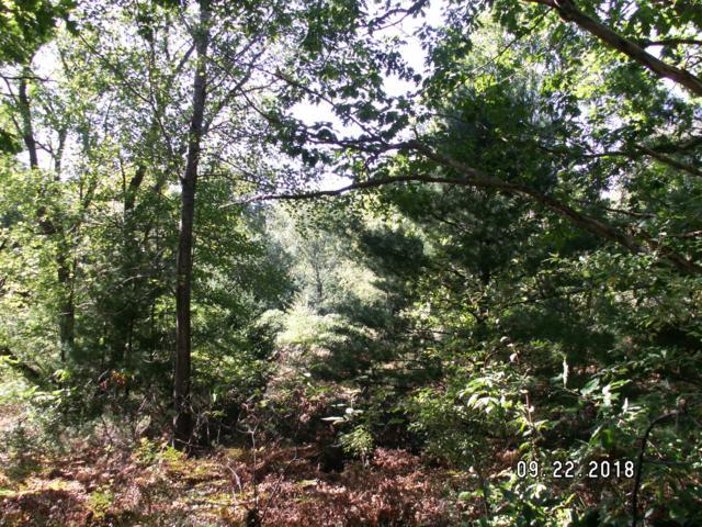 Rath Rd 10 Acres N, Ludington, MI 49431 (MLS #18047405) :: Deb Stevenson Group - Greenridge Realty