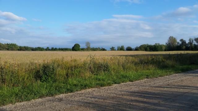 E Sugar Grove Road, Fountain, MI 49410 (MLS #18047503) :: Deb Stevenson Group - Greenridge Realty