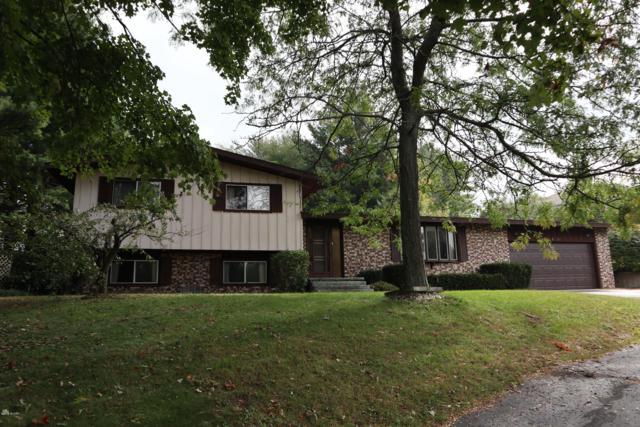 300 N Apricot Lane, Shelby, MI 49455 (MLS #18047509) :: Carlson Realtors & Development