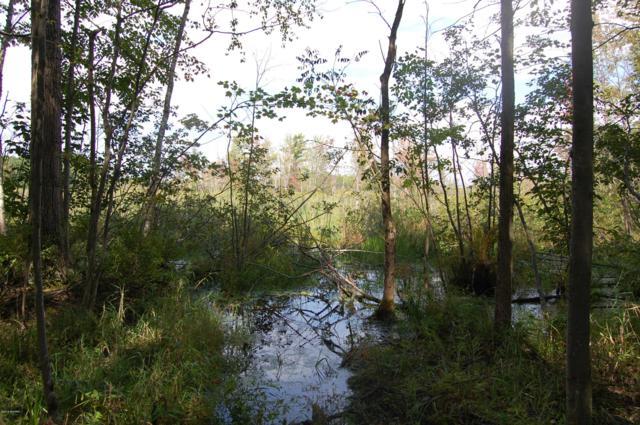 Mcgrath Road, Beaverton, MI 48612 (MLS #18047636) :: Deb Stevenson Group - Greenridge Realty