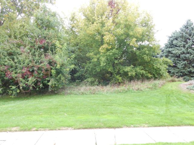 533 Donna Street NW, Sparta, MI 49345 (MLS #18047652) :: Deb Stevenson Group - Greenridge Realty