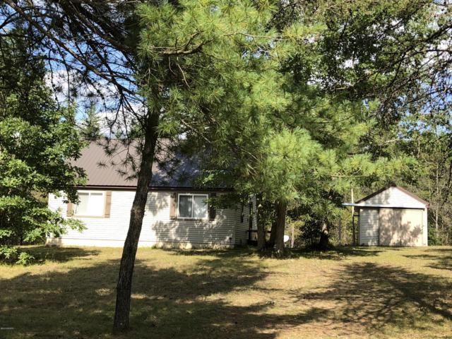 2974 E 56th Street, Chase, MI 49623 (MLS #18047696) :: Deb Stevenson Group - Greenridge Realty
