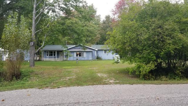 2438 W Lake Road, Hart, MI 49420 (MLS #18047897) :: Deb Stevenson Group - Greenridge Realty