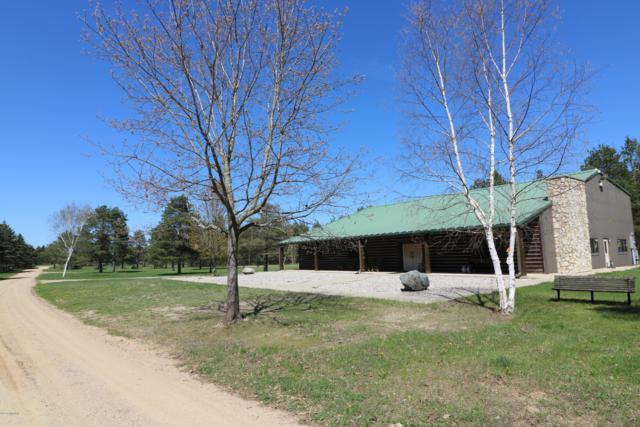 643 S Old Camp Trail, Crystal, MI 48818 (MLS #18047964) :: Deb Stevenson Group - Greenridge Realty