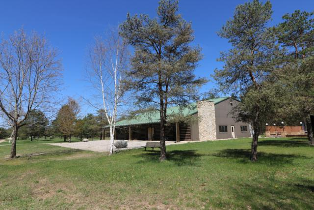 643 S Old Camp Trail, Crystal, MI 48818 (MLS #18047978) :: Deb Stevenson Group - Greenridge Realty