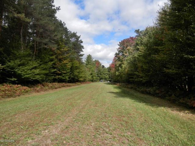 Fieldstone Drive G, Bear Lake, MI 49614 (MLS #18048036) :: JH Realty Partners