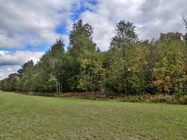 Fieldstone Drive F & H, Bear Lake, MI 49614 (MLS #18048145) :: CENTURY 21 C. Howard