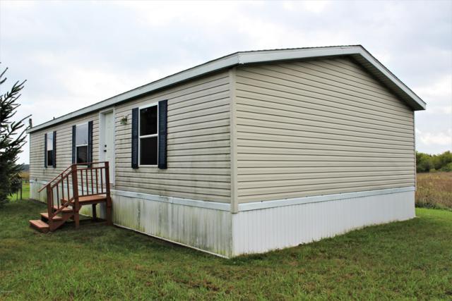 6143 W Tamarack Road, Lakeview, MI 48850 (MLS #18048275) :: Matt Mulder Home Selling Team