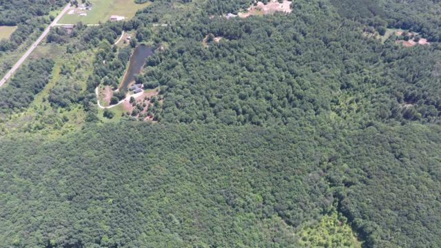 22711 15 Mile Rd. #3, Big Rapids, MI 49307 (MLS #18048580) :: Deb Stevenson Group - Greenridge Realty