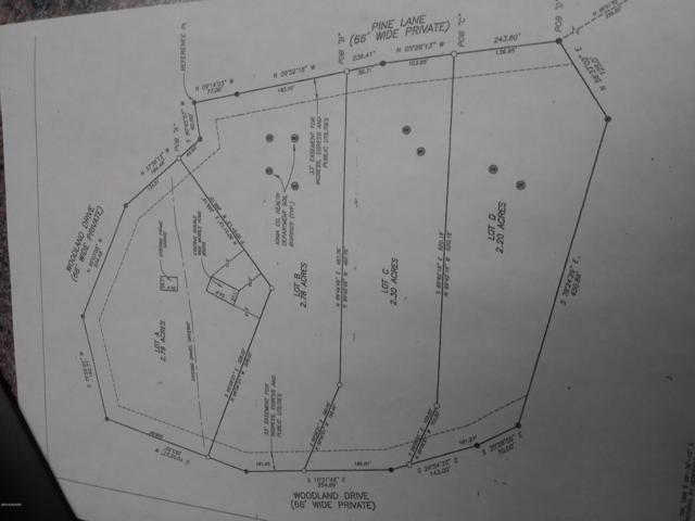 Parcels-B, C & D Pine Lane, Saranac, MI 48881 (MLS #18048609) :: Deb Stevenson Group - Greenridge Realty