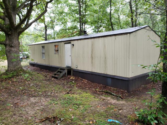 1926 S Deer Lake Drive, Reed City, MI 49677 (MLS #18048689) :: Matt Mulder Home Selling Team
